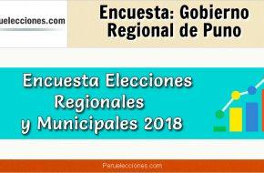Encuesta Online Gobierno Regional de Puno – Mes Octubre 2018