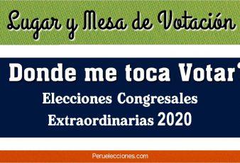 Consultar Local y Mesa de Votación Elecciones 2020