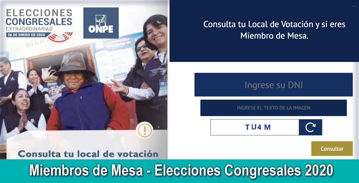 Miembros de Mesa - Elecciones Congresales 2020