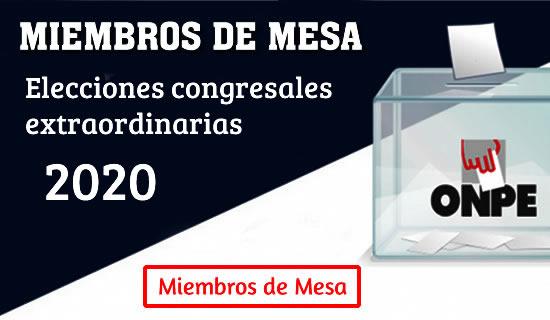 Miembros de mesa ONPE 2020
